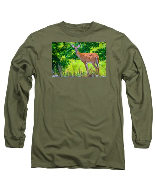 Long Sleeve T-Shirt featuring the photograph White-tailed Deer 2 by Brian Stevens