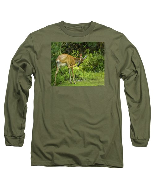 White Tailed Deer Scratching It's Nose Long Sleeve T-Shirt by Ken Morris