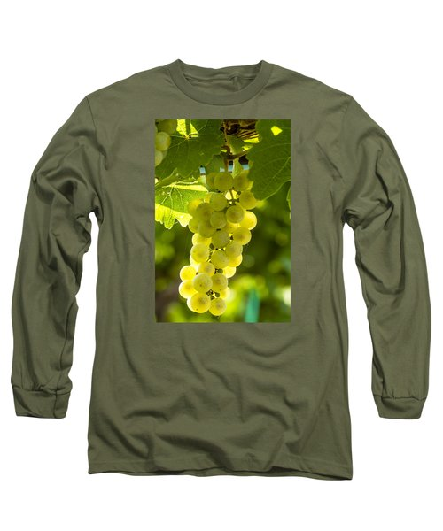 White Wine Grapes Lit By The Sun Long Sleeve T-Shirt by Teri Virbickis