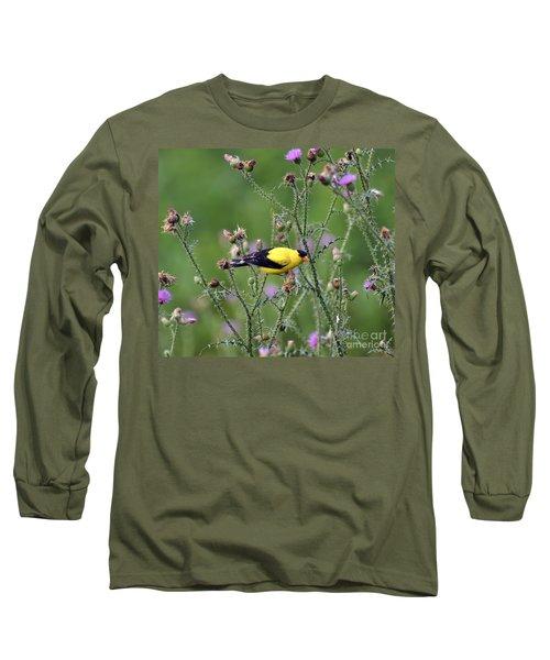 Wild Birds - American Goldfinch Male Long Sleeve T-Shirt by Kerri Farley