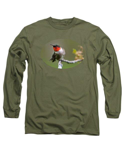 Wild Birds - Ruby-throated Hummingbird Long Sleeve T-Shirt
