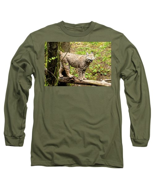 Wild Bobcat In Mountain Setting Long Sleeve T-Shirt by Teri Virbickis