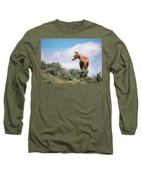 Wild Mustang Stallion Of Sand Wash Basin Long Sleeve T-Shirt