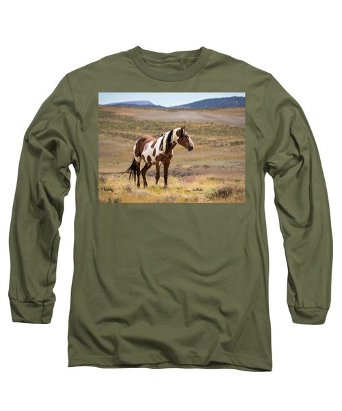 Wild Mustang Stallion Picasso Of Sand Wash Basin Long Sleeve T-Shirt