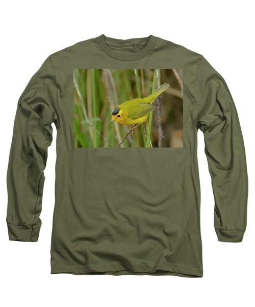 Wilson's Warbler Long Sleeve T-Shirt by Doug Herr