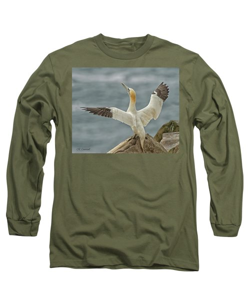 Wing Flap Long Sleeve T-Shirt by CR Courson