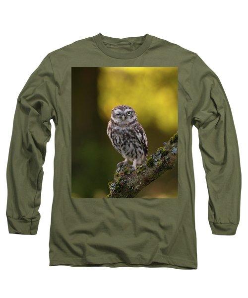 Winking Little Owl Long Sleeve T-Shirt