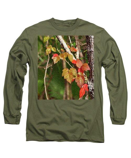 Winter On Gillot Blvd. Pt. Charlotte,fl Long Sleeve T-Shirt