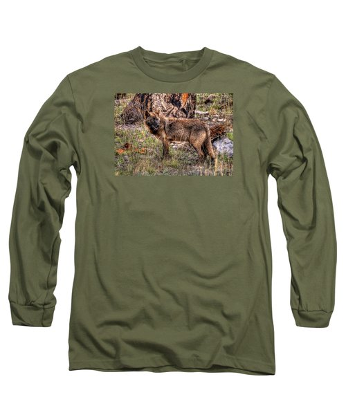 Wolf Looking Back Long Sleeve T-Shirt by CR  Courson