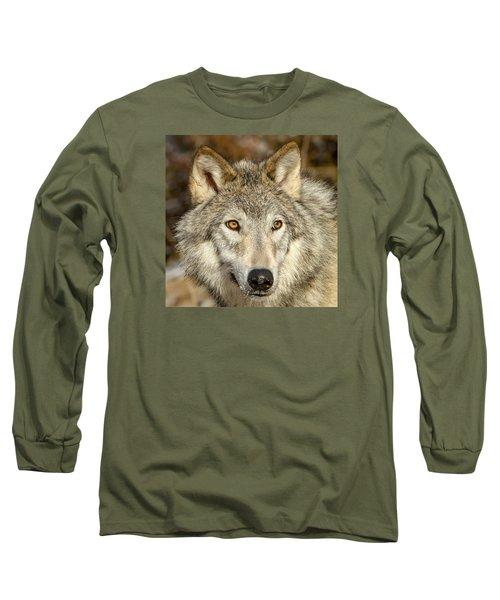 Wolf Portrait Long Sleeve T-Shirt by Jack Bell