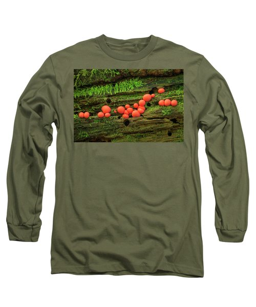 Wood Fungus Long Sleeve T-Shirt