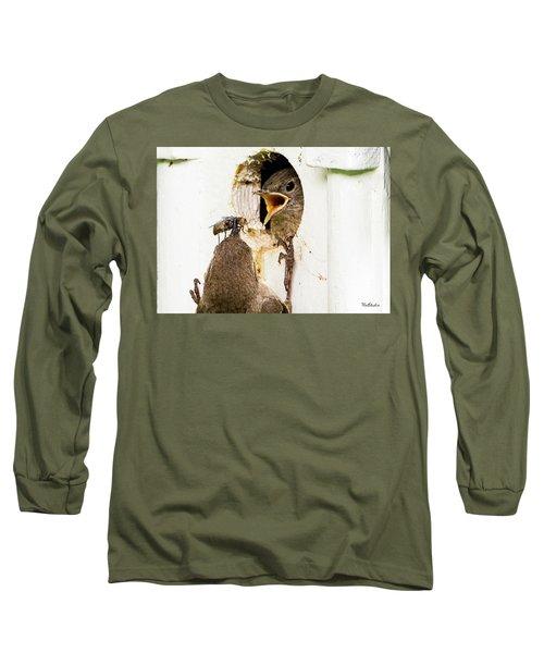 Wren Breakfast Long Sleeve T-Shirt