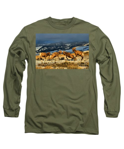 Long Sleeve T-Shirt featuring the photograph Wyoming Bighorn Brawl by Adam Jewell