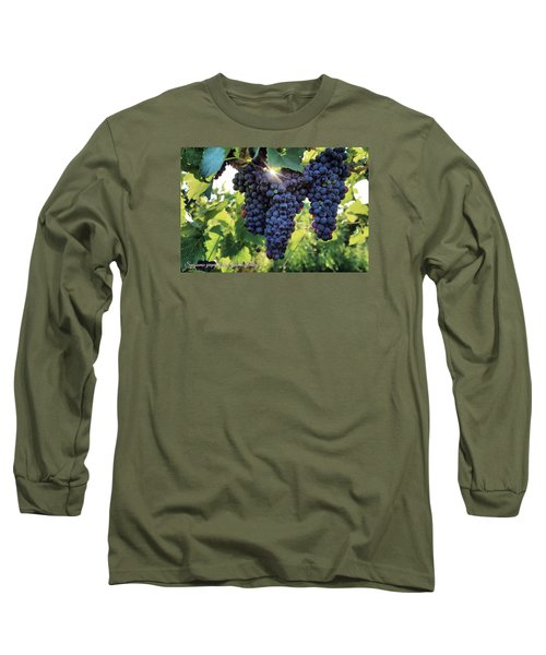 Long Sleeve T-Shirt featuring the photograph Yakima Valley Grapes by Lynn Hopwood