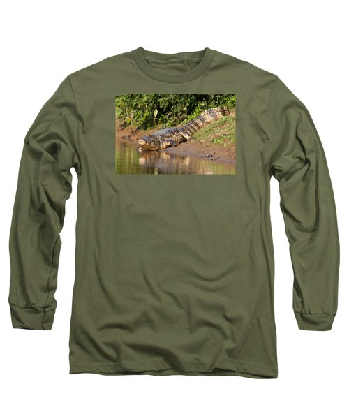 Alligator Crawling Into Yakuma River Long Sleeve T-Shirt by Aivar Mikko