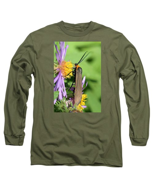 Long Sleeve T-Shirt featuring the photograph Yellow-collared Scape Moth by Doris Potter