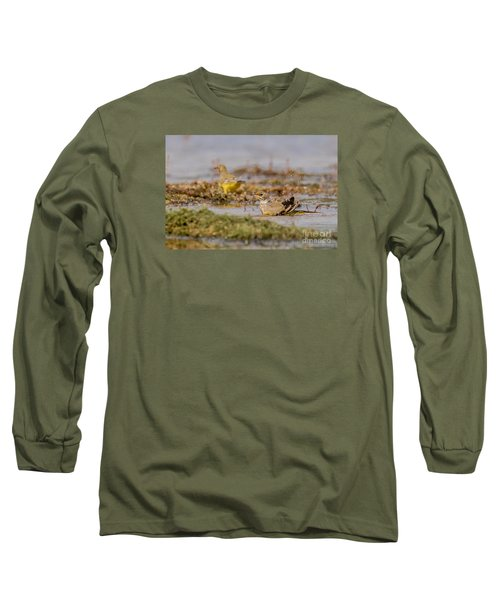 Yellow Crowned Wagtail Juvenile Bath Time Long Sleeve T-Shirt by Jivko Nakev