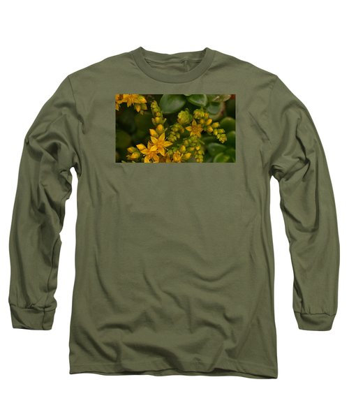 Yellow Sedum Long Sleeve T-Shirt by Richard Brookes