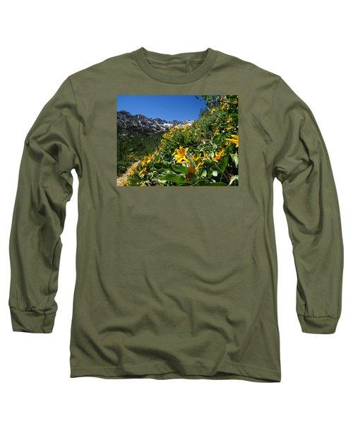 Yellow Wildflowers Long Sleeve T-Shirt by Alan Socolik