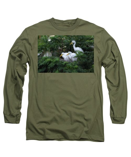 Young Egrets Fledgling And Waiting For Food-digitart Long Sleeve T-Shirt