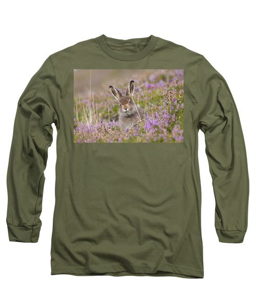 Young Mountain Hare In Purple Heather Long Sleeve T-Shirt