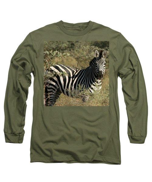 Long Sleeve T-Shirt featuring the photograph Zebra Portrait by Karen Zuk Rosenblatt