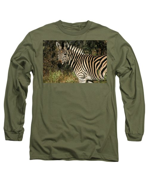 Zebra Watching Long Sleeve T-Shirt