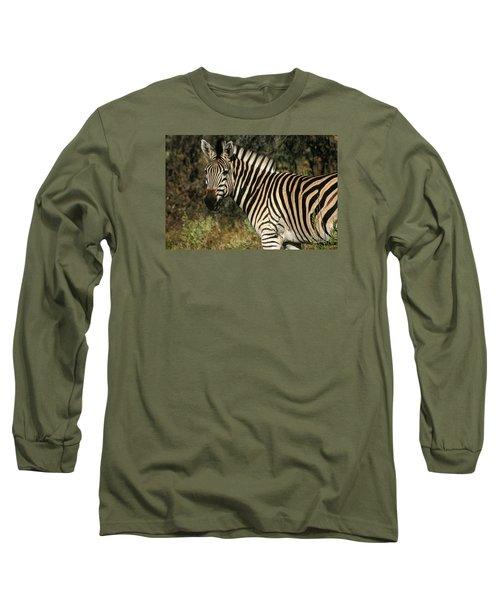Long Sleeve T-Shirt featuring the painting Zebra Watching by Karen Zuk Rosenblatt