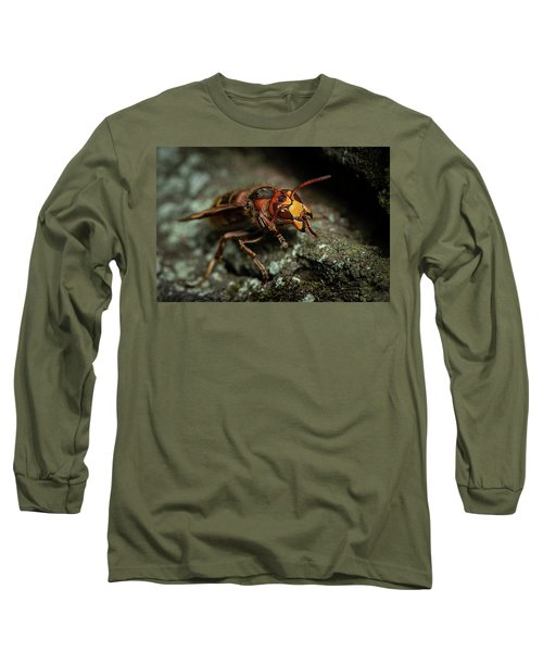 A European Hornet Sitting On A Tree Long Sleeve T-Shirt