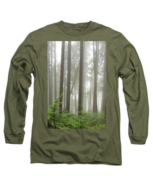 Long Sleeve T-Shirt featuring the photograph Foggy Forest by Karen Zuk Rosenblatt