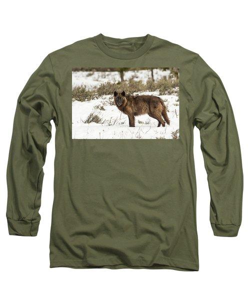 W7 Long Sleeve T-Shirt
