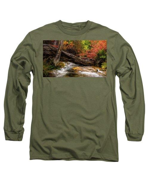 Autumn Dogwoods Long Sleeve T-Shirt