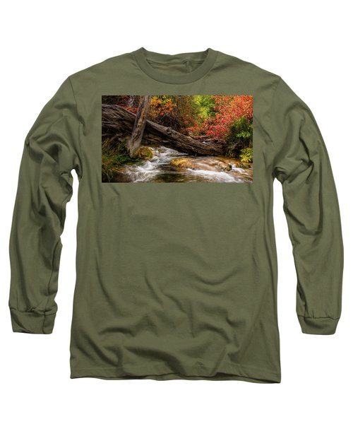 Autumn Dogwoods Long Sleeve T-Shirt