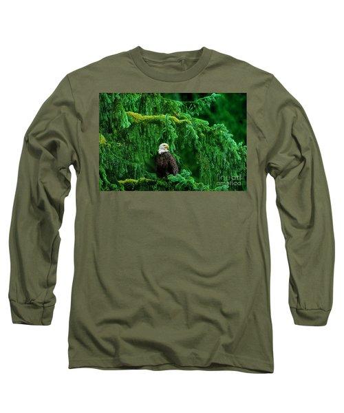 Bald Eagle In Temperate Rainforest Alaska Endangered Species Long Sleeve T-Shirt