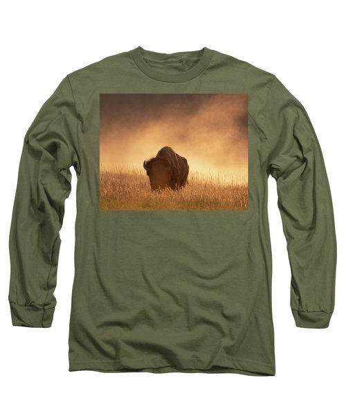 Bison In The Dust 2 Long Sleeve T-Shirt