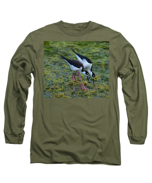 Black-necked Stilts Long Sleeve T-Shirt