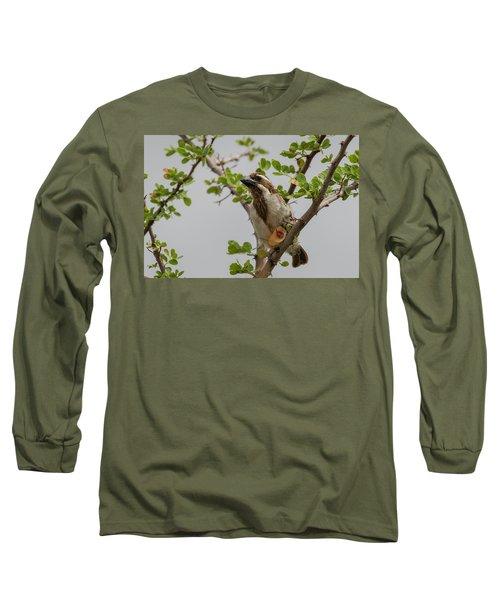 Black-throated Barbet Long Sleeve T-Shirt