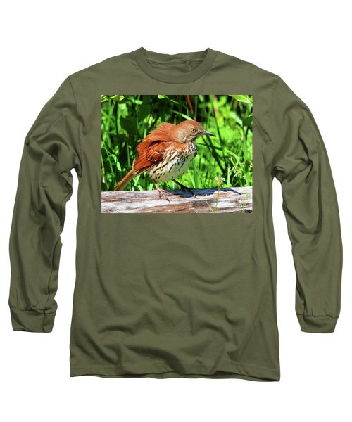 Brown Thrasher Long Sleeve T-Shirt