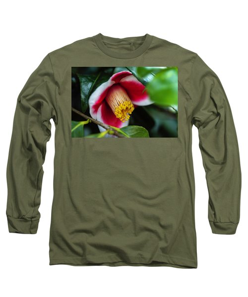 Camellia Bloom And Leaves Long Sleeve T-Shirt
