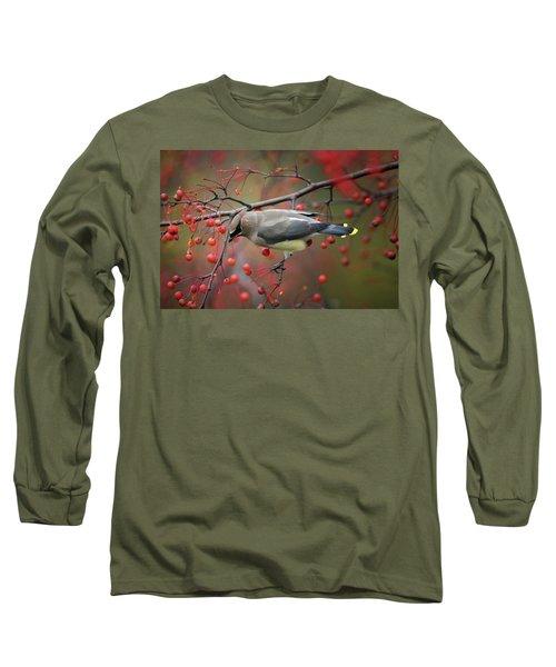 Cedar Waxwing 102206 Long Sleeve T-Shirt
