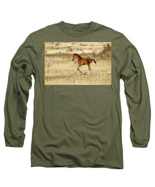 Cute Wild Bay Foal Galloping Across A Field Long Sleeve T-Shirt