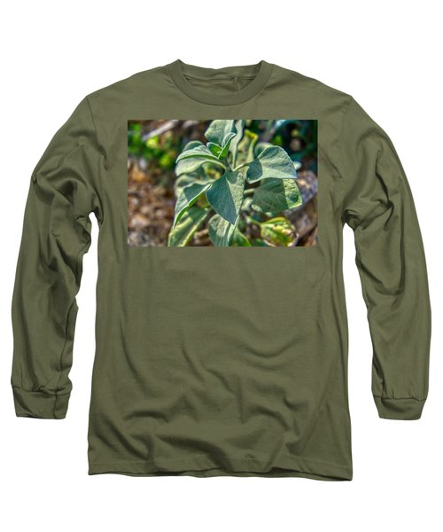 Desert Plant Life Long Sleeve T-Shirt
