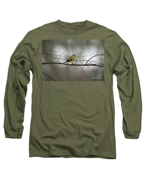 Goldfinch In Winter Looking At You Long Sleeve T-Shirt
