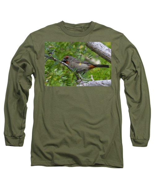 Greater Antillean Bullfinch Long Sleeve T-Shirt
