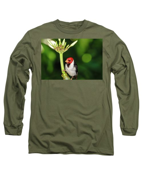 Happy Valentine's Day Bird Long Sleeve T-Shirt