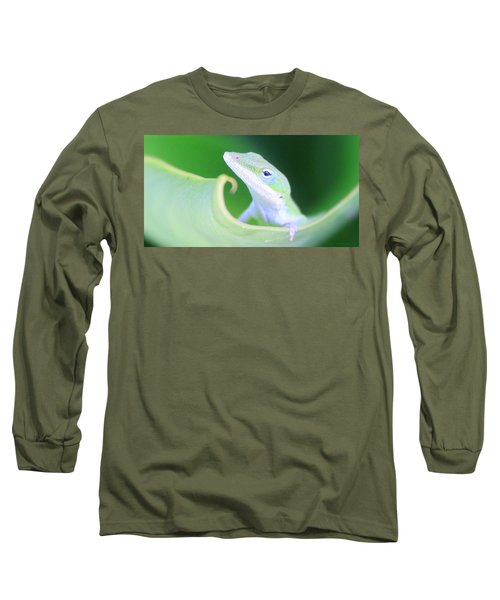 Hello, Anole. 2 Long Sleeve T-Shirt