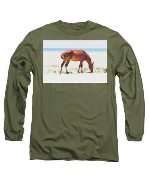 Horse On Beach Long Sleeve T-Shirt