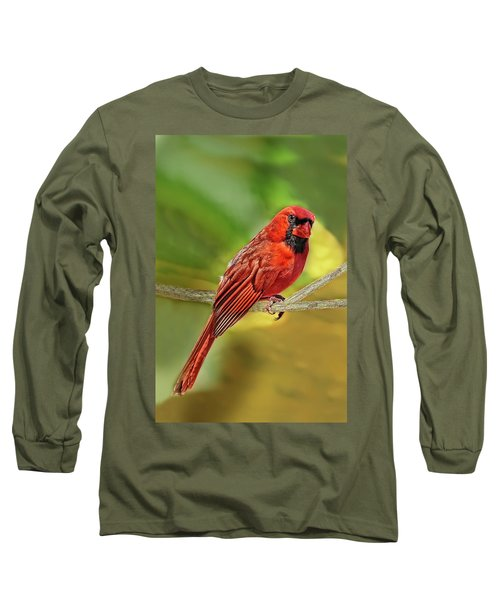 Male Cardinal Headshot  Long Sleeve T-Shirt