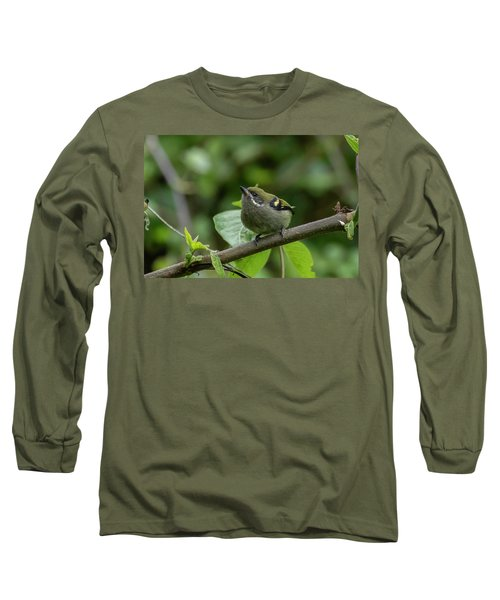 Moustached Tinkerbird Long Sleeve T-Shirt