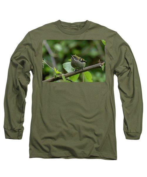 Moustached Tinkerbird Long Sleeve T-Shirt